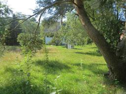 Ferienhaus Sokollek - Garten im Sommer